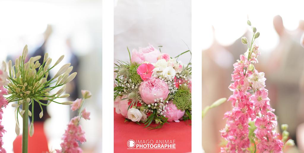 mariage champêtre Imago Animae Photographie 8
