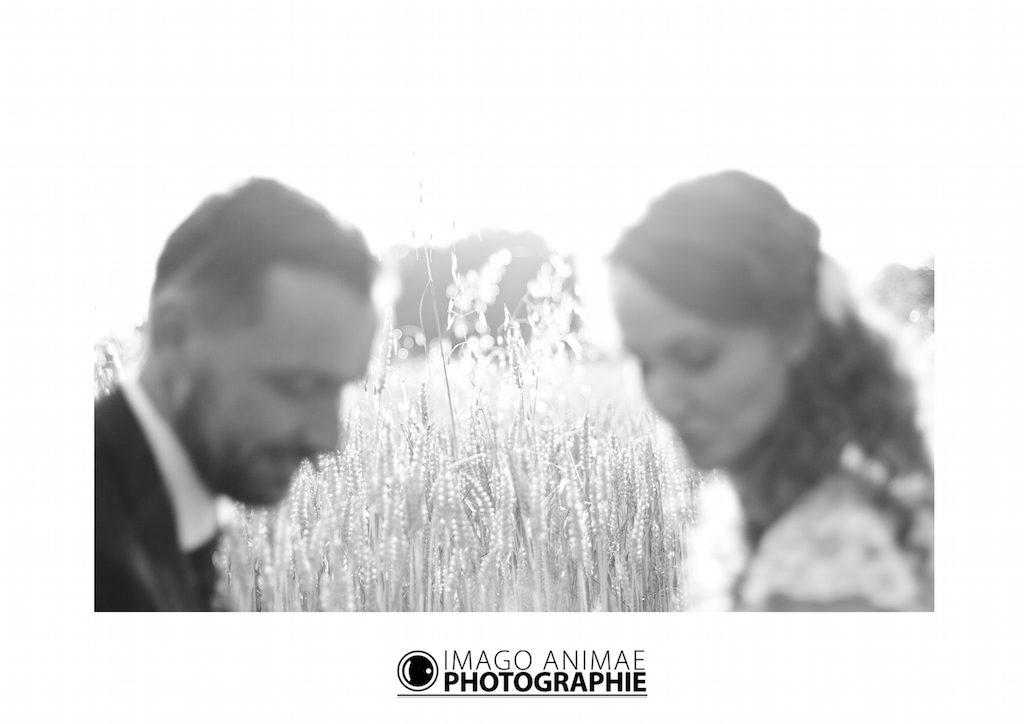 mariage champêtre Imago Animae Photographie 31