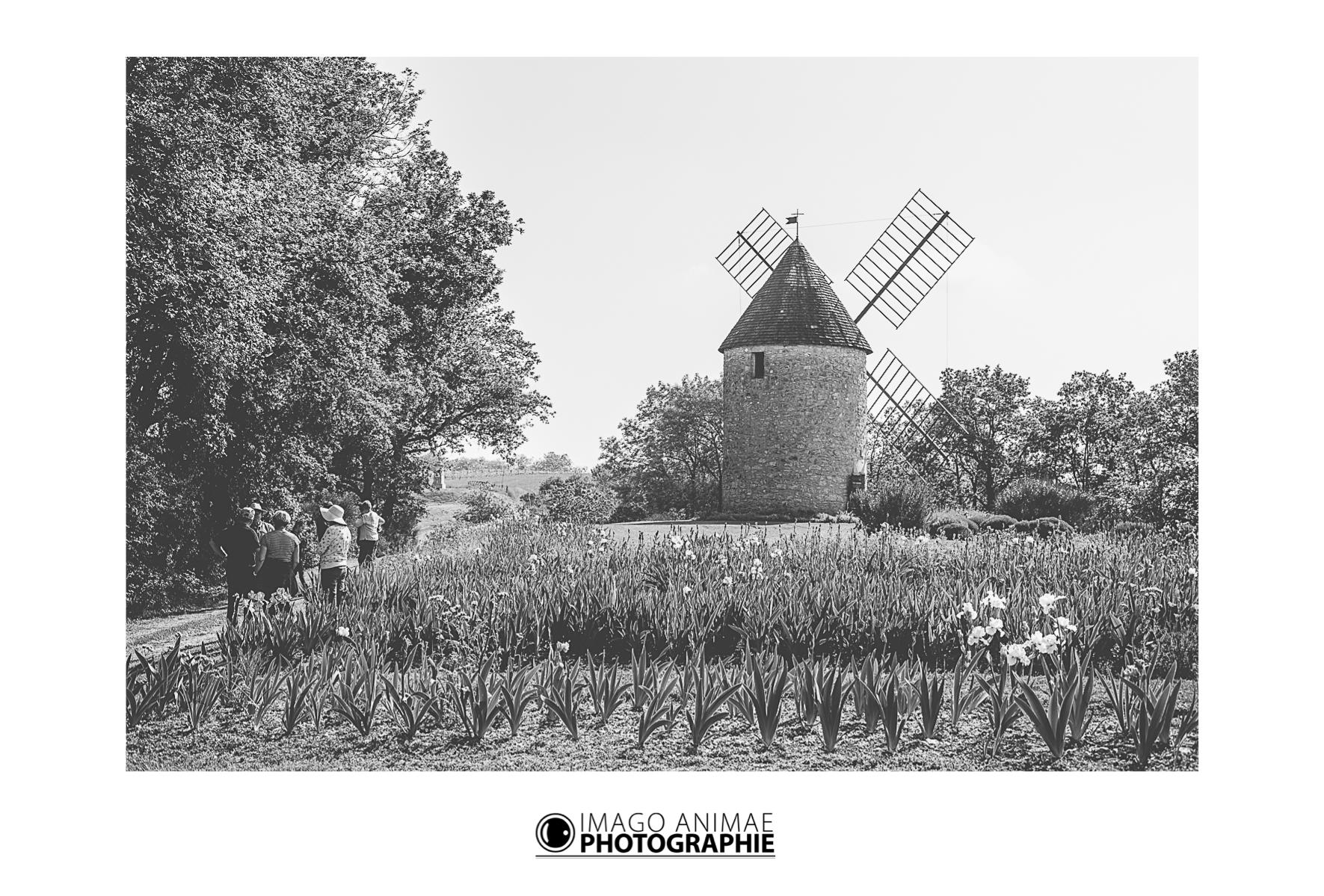 Christophe Camps - Imago Animae Photographie - Mariage - Lifestyle - www.imagoanimae.fr